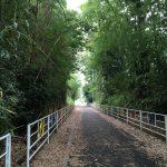 Tsukuba hill climb